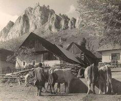 Old Photography, Bratislava, Mount Rushmore, Nostalgia, The Past, Mountains, Black And White, Retro, Places