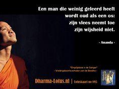 Lotuskaart no: 895 http://www.dharma-lotus.nl/lotuskaarten.asp