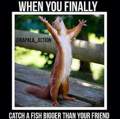 Take this dude! Now who's the loser??!😂😂😂😂😜🎣😊🎣🐟 What are you gonna do about it ? 😂😂😂Like and share this with your friends! 😊🐟🎣 #fishingplace #fishing #fishermen #weekend #fishingplacecom #proud #bigger #fish #buddy #crazy #finally #damn #lol #winner #fishing #flyfishing #fishinglife #fishingtrip #fishingboat #troutfishing #sportfishing #fishingislife #fishingpicoftheday #fishingdaily #riverfishing #freshwaterfishing #offshorefishing #deepseafishing #fishingaddict #lurefishing…