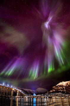 My Beloved V.3 | Arctic Light Photo Ole C. Salomonsen Photography