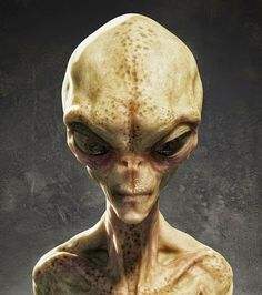 Are there aliens on Mars? NASA have revealed photos to indicate there are aliens on Mars. Take a look here to see the proof of aliens on Mars. Les Aliens, Aliens And Ufos, Ancient Aliens, Alien Gris, Grey Alien, Blue Planet Project, Earth Defense Force, Rose Croix, Alien Concept