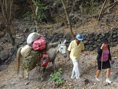 We sent shoes to ORPHANetwork in Nicaragua - and they distributed 9,000 pairs! They had to travel by horseback to get to one of the remote villages.