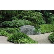 Tamamono Japanese Garden Plant Shape