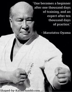 Martial arts quotes  Shaped by Karate