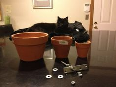 """Picture of Materials 3 different sized clay planting pots   -  1 large bolt (approx. 5"""")   -  6 washers   -  1 flat bracket   -  1 Candle in a jar (like a Yankee Candle)"""