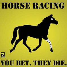 Stop Horse Racing  http://x.vu/bettingscientistguides