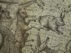 Astronomy Vintage Print  Old Star Chart Poster Of Camelopardalis