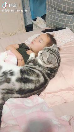 Cute Funny Animals, Cute Little Animals, Cute Cats, Baby Hug, Cute Baby Videos, Fluffy Animals, Cat Breeds, Kittens Cutest, Hug Me