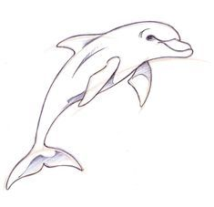 Dolphin drawing This artist has real talent… Animal Sketches, Animal Drawings, Cool Drawings, Tattoo Drawings, Drawing Sketches, Pencil Drawings, Drawing Faces, Drawing Tips, Sketching
