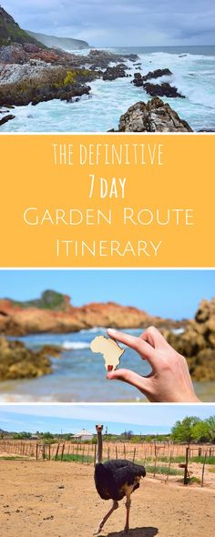 Gardening garden route itinerary - A road trip on South Africa's Garden Route is the best way to discover the country's nature and have an adventure. Check out this 7 day Garden Route itinerary to get planning! Amazing Destinations, Travel Destinations, Holiday Destinations, Tsitsikamma National Park, Surf Competition, Dubai Miracle Garden, Visit South Africa, Highlights, Packing List For Travel