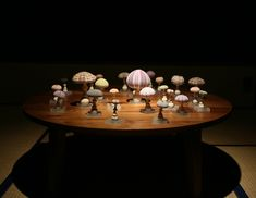 mushrooms that were made of husks of the sea urchin   Nature Art Exhibition - Presented by Sola Cube【UNINOCO】自然の造形美展 ウニの殻を「キノコの傘」に見立てた作品。ちゃぶ台に載せてみました。