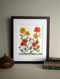 Pressed flowers print, 11x14 double matted, Cosmos flowers, bright orange and gold, wall decor no. 0048