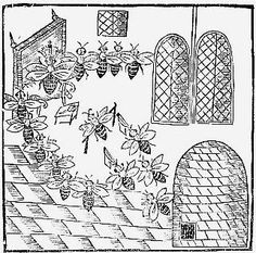Frontispiece woodcut from John Day's PARLIAMENT OF BEES. 1641