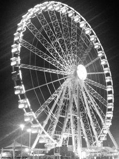 Circle in the night