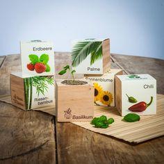 ecocube - planten in