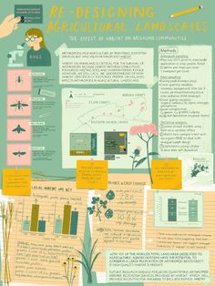 scientific poster design My advice for creating an academic poster Ecology for Life Graphic Design Cv, Poster Design Layout, Graphic Design Inspiration, Web Design, Jazz Poster, City Poster, Academic Poster, Research Poster, Information Poster