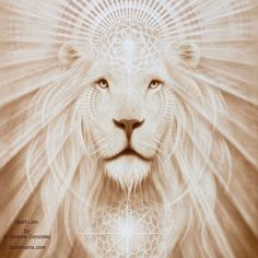I AM the lion who roars with the confidence of its own divinity. I AM that. I AM…