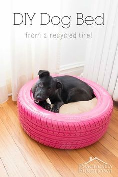 With a fluffy pillow, a tire becomes a dog bed. So cute!
