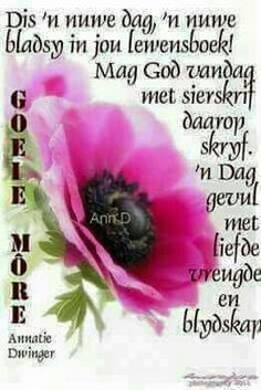 Good Morning Messages, Good Morning Good Night, Good Morning Wishes, Day Wishes, Good Morning Quotes, Have A Blessed Sunday, Evening Greetings, Afrikaanse Quotes, Goeie More