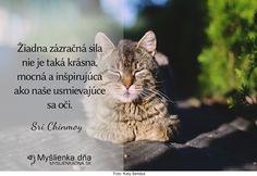 Žiadna zázračná sila nie je taká krásna, mocná a inšpirujúca ako naše usmievajúce sa oči.Sri Chinmoy