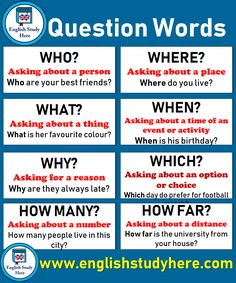 Question Words, Definitions and Example Sentences