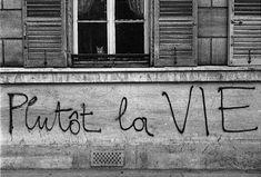 Paris, mai 1968 - Graffiti sur un mur - Photo Edouard Boubat Ni étudiant, ni pavé, ni CRS, mais juste le regard du chat, en contrepoint du graffiti... Photographies
