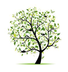 Spring tree green with birds for your design vector 956817 - by Kudryashka on VectorStock®