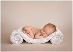 {Las Vegas Newborn Photographer | LJHolloway Photography} Sylvie Violet http://fancytemplestore.com