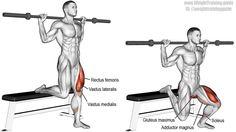 Barbell Bulgarian split squat exercise