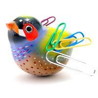 Magnetic Birdie