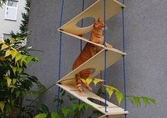 Best ideas 4 stairway