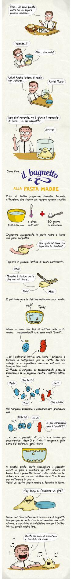 bagnetto-pasta-madre.jpg 640×5.111 pixel