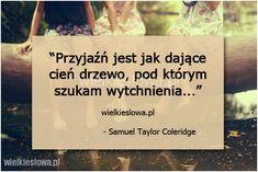 Przyjaźń jest jak dające cień drzewo... #Coleridge-Samuel-Taylor,  #Przyjaźń