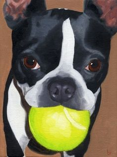 Boston Terrier Dog Art PRINT from Oil Painting via Etsy.