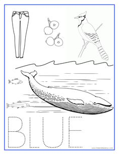 BLUE Color Activity Sheet  -Repinned by Totetude.com