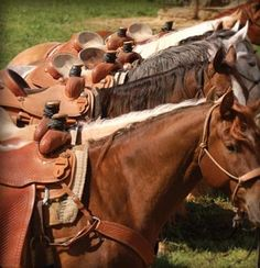 NRS - National Ropers Supply - Team Ropes, Western Wear, Horse Tack, Horse Trailers, Team Roping, Cowboy Boots Hats |
