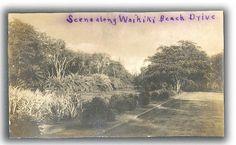 Pre 1920s Postcard View of Waikiki, Oahu
