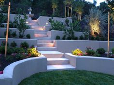 Cement retaining walls. I like this idea. Very clean lines. Also like lighting.