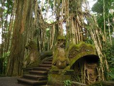 Sacred Monkey Forest, Ubud, Bali, Indonesia. I know - there are no monkeys in this photo. Be thankful-they are obnoxious.