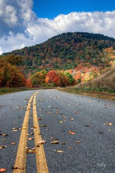 ....middle of the road ~ Highland Scenic Highway