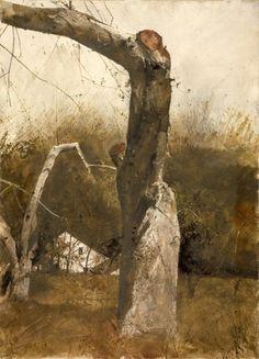 "admire-andrew-wyeth:  ""  Andrew Wyeth  """
