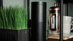 4 common Amazon Echo problems and how to fix them - CNET