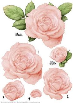 A beautiful large rose, (will roughly fit in 6x6 square) decoupage sheet. All layers numbered plus a one off smaller rose. Brilliant for your designs! More colours available and watch out for the matching paper kit. Please click on my name to see more of my designs!