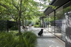 Neil Architecture