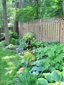 Three Dogs in a Garden: A Shade Garden in Oakville, Ontario Hydrangea Landscaping, Small Backyard Landscaping, Backyard Patio, Landscaping Ideas, Love Garden, Shade Garden, Garden Plants, Japanese Painted Fern, Hydrangea Quercifolia