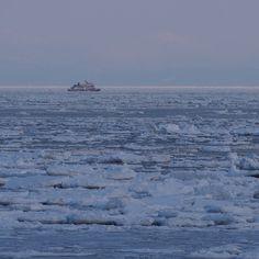 #流氷観光砕氷船 #おーろら #流氷 #観光船 #砕氷船 #網走 #オホーツク #オホーツク海 #北海道 (二ツ岩)