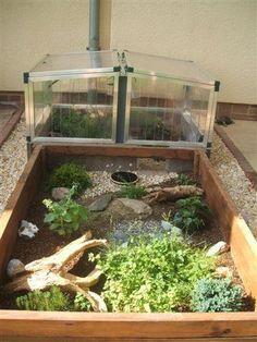Tortoise House, Tortoise Habitat, Tortoise Table, Turtle Enclosure, Tortoise Enclosure, Reptile Enclosure, Turtle Pond, Pet Turtle, Turtle Homes