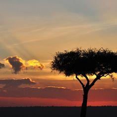 Landschap Kenia