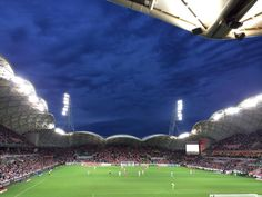 Aami Park One Day I Will, Melbourne Australia, Football Soccer, Victorious, Dolores Park, Events, Board, Photos, Travel