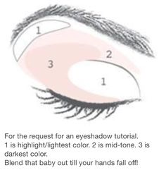 Smokey eye diagramg beauty tips pinterest smoky eye easy eyeshadow application for beginners ccuart Gallery